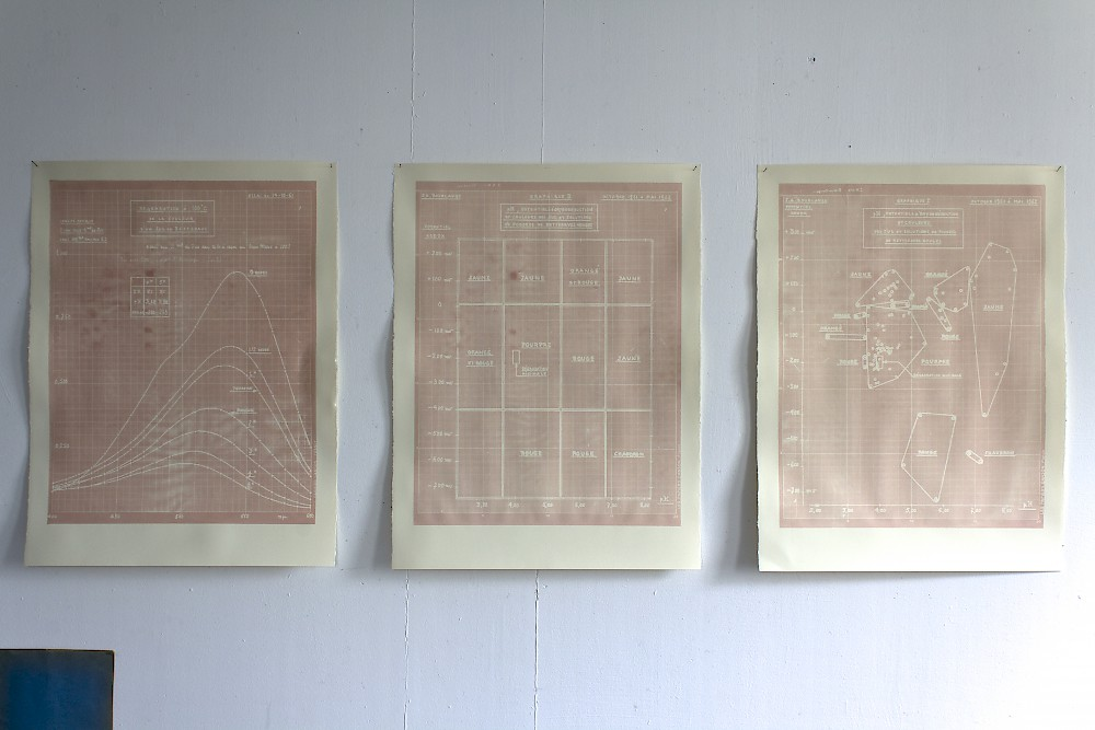 Silkscreen on paper with red beetroot paste - 3 à 80x60cm diagrams of oxydation of beetroots color according to various pH and temperature